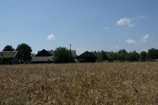 A farm in Lusławice