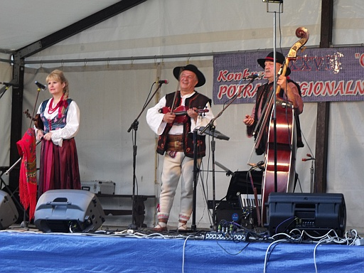 Performers at the music festival