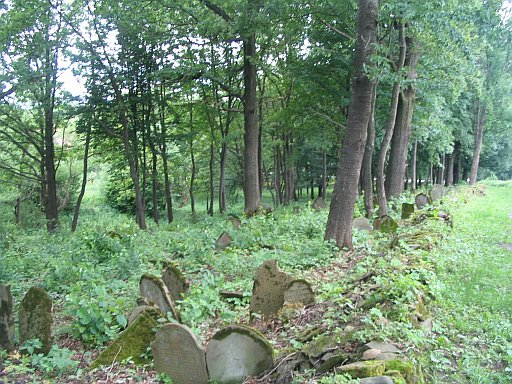 Rzeszów region. The old Jewish cemetery in Nowy Żmigród, currently under renovation by local authorities and Jewish organizations.